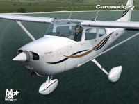 CARENADO - Cessna 172N Skyhawk II