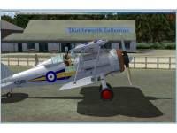 FSADDON - Gloster Gladiator X