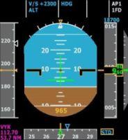 ERNIE ALSTON - Integrated Simavionics Group 1